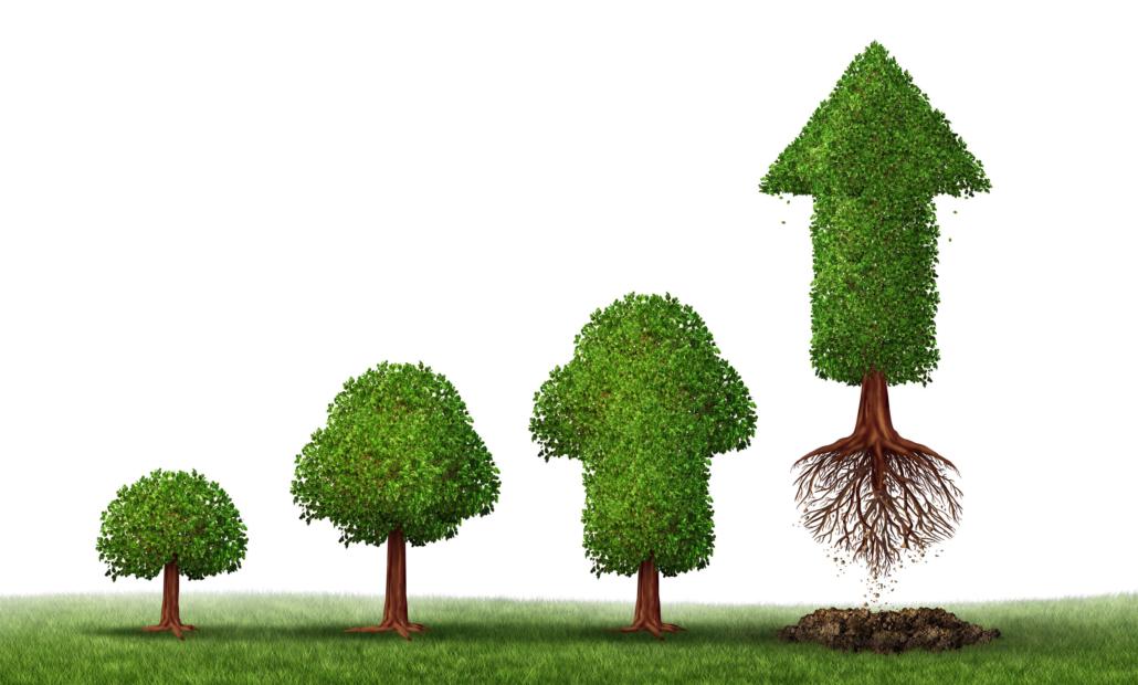 Hvad er Lead generering, lead nurturing og lead scoring?